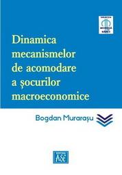Dinamica mecanismelor de acomodare a socurilor macroeconomice