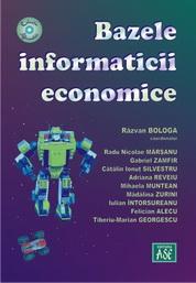 Bazele informaticii economice