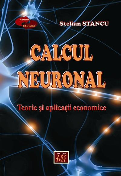 Neuronal calculation. Theory and economic applications
